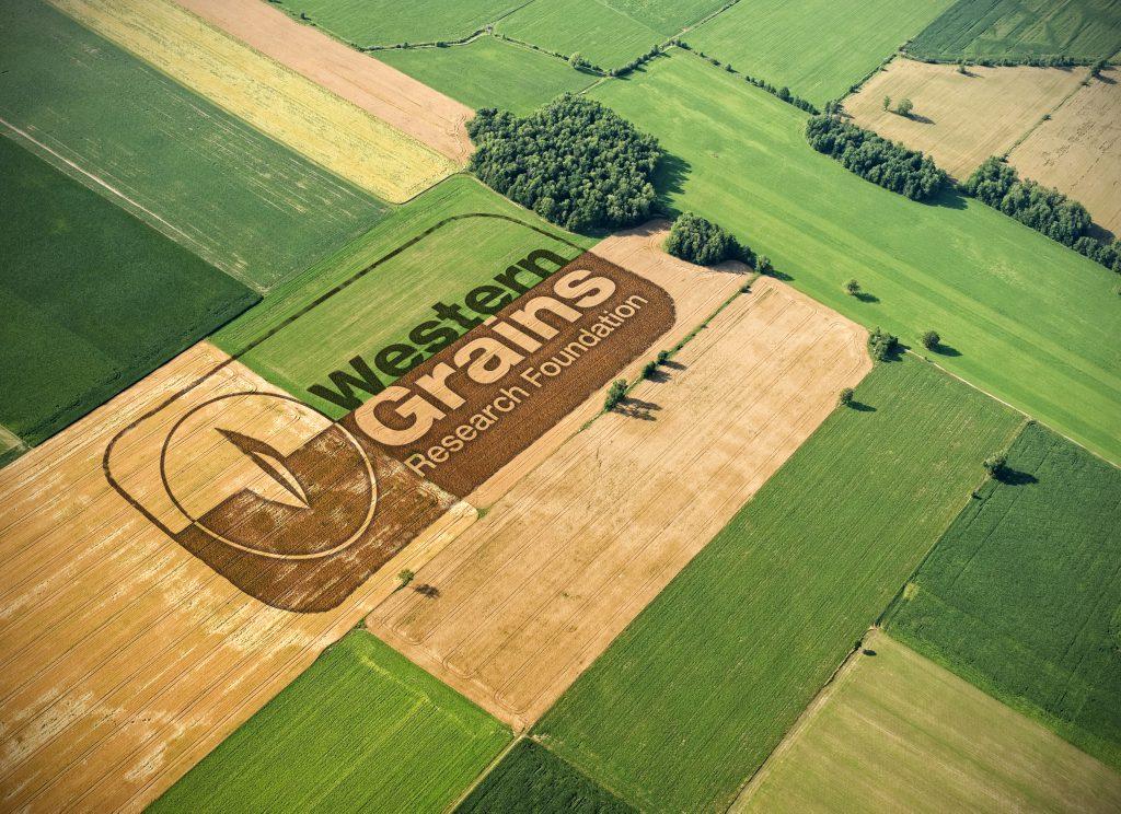 Western Grains