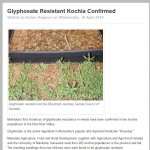 Glyphosate Resistant