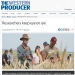 Researchers keep eye on rye