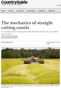 Straight Cut Canola