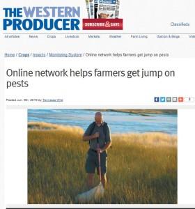 WP online network